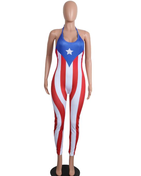 Caribbean Flag Fashion Puerto Rico Gotita Brands